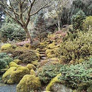 Asian garden Portland, Oregon