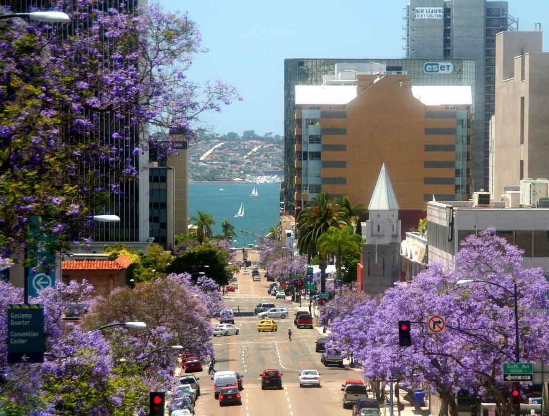 Completely new San Diego: A Garden Delight | Garden Destinations Magazine MO52