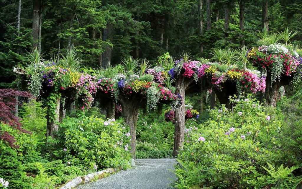 Glacier Gardens In Alaska Garden Destinations Magazine