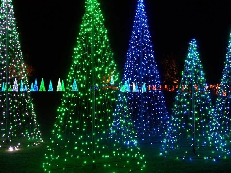 10 Gardens That Glitter with Holiday Lights