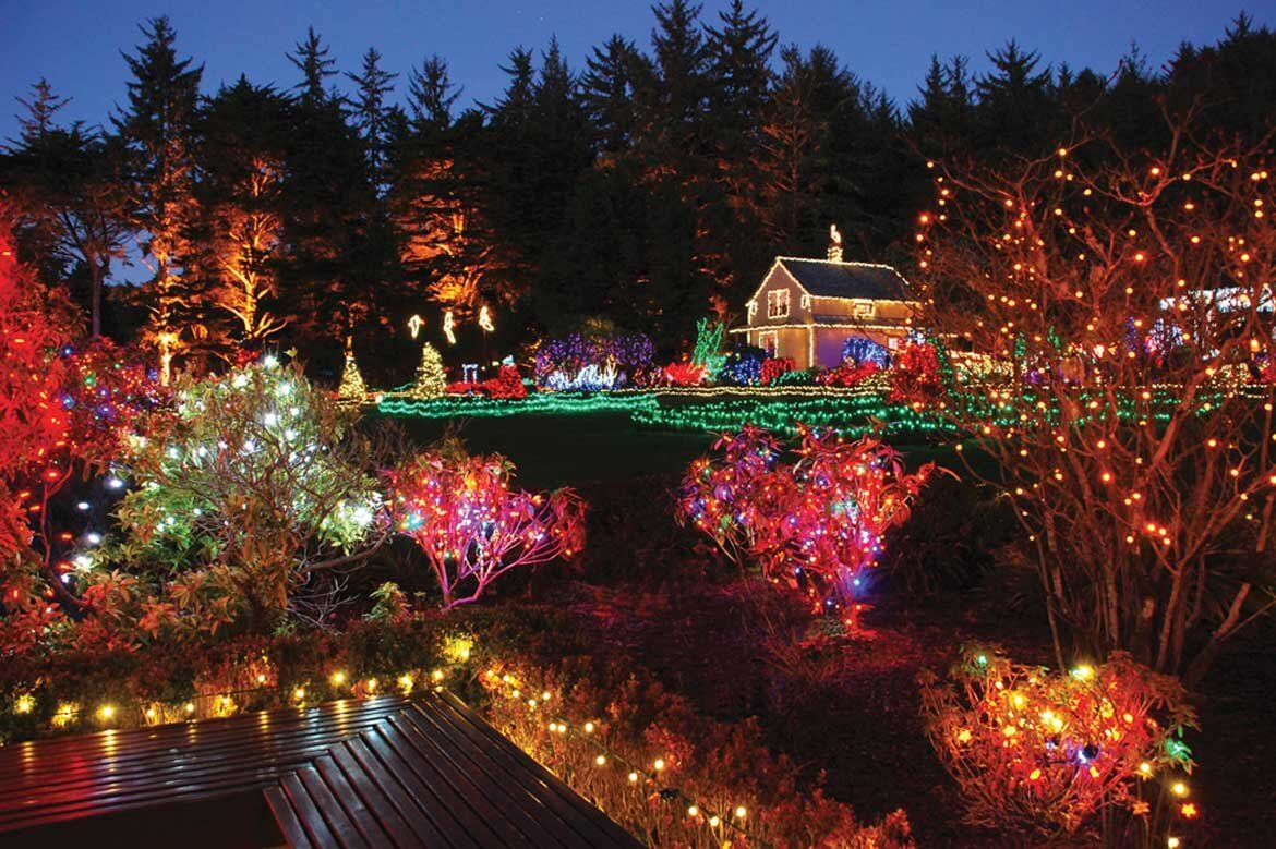 10 gardens that glitter with holiday lights garden - Daniel stowe botanical garden christmas ...