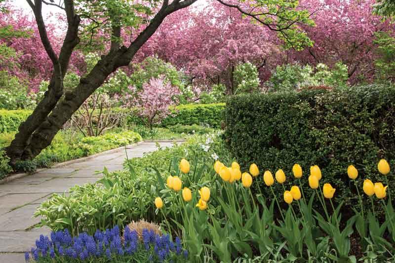Ordinaire The Conservatory Garden In Spring / Central Park Conservatory Garden