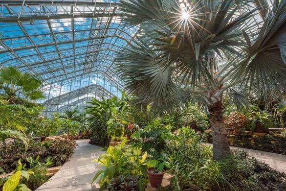 Marjorie K. Daugherty Conservatory at the Lauritzen Gardens