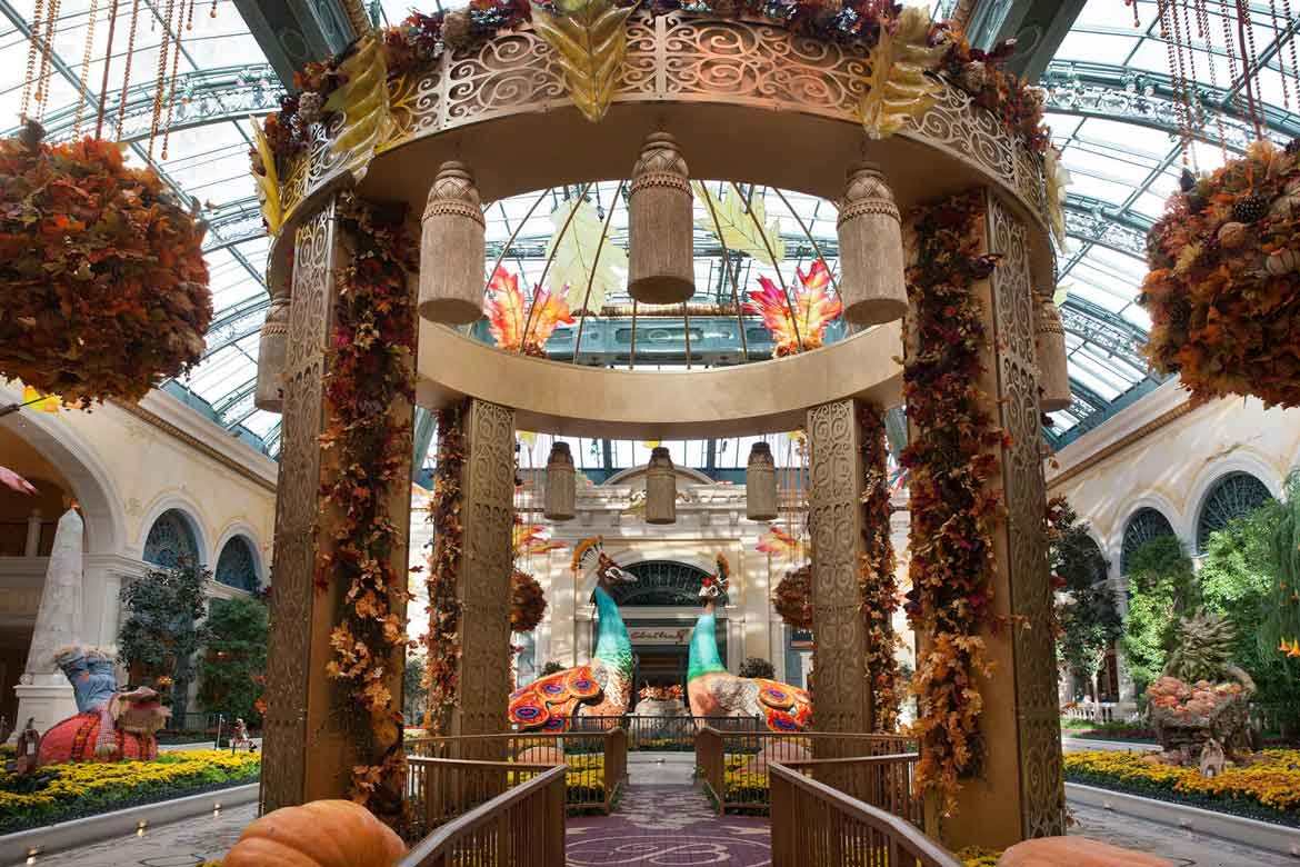 Bellagio Conservatory and Botanical Gardens, Las Vegas | Garden ...
