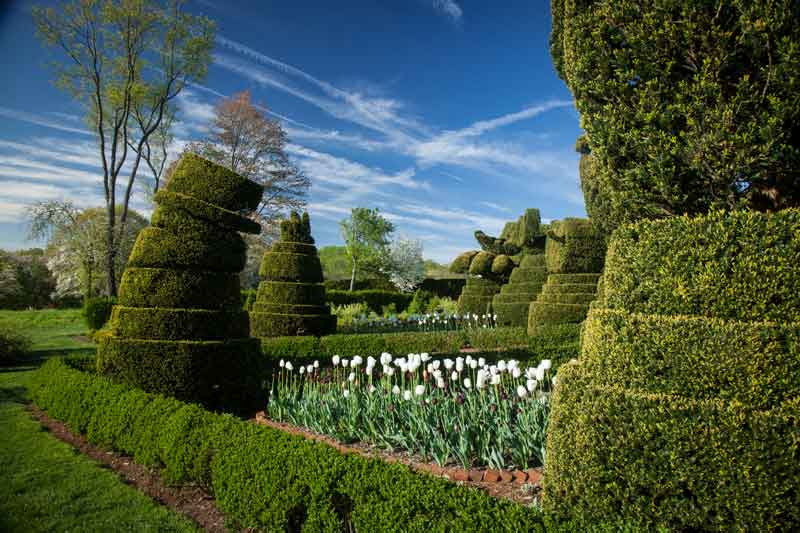 Ladew Topiary Gardens Maryland