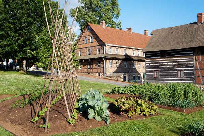 Old Salem garden