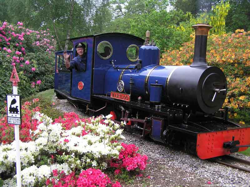 Steam engine Mariloo at Exbury Gardens