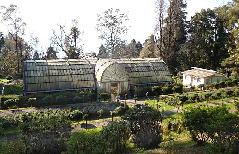 Lloyd's Botanical Garden India