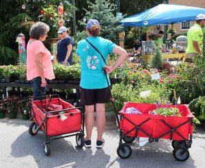 Garden Jubilee Hendersonville NC