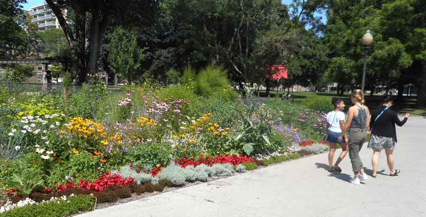 Allen Gardens in Toronto