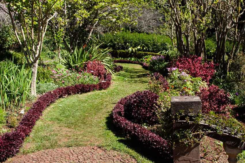 Palheiro Gardens in Madeira