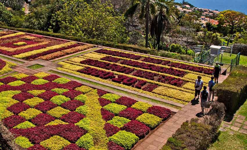 Madeira Botanical Garden mosaic garden