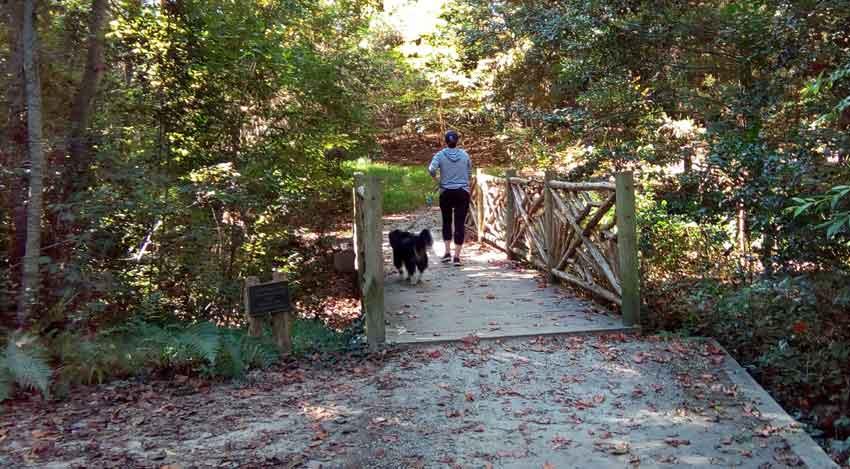 Village Arboretum in Pinehurst