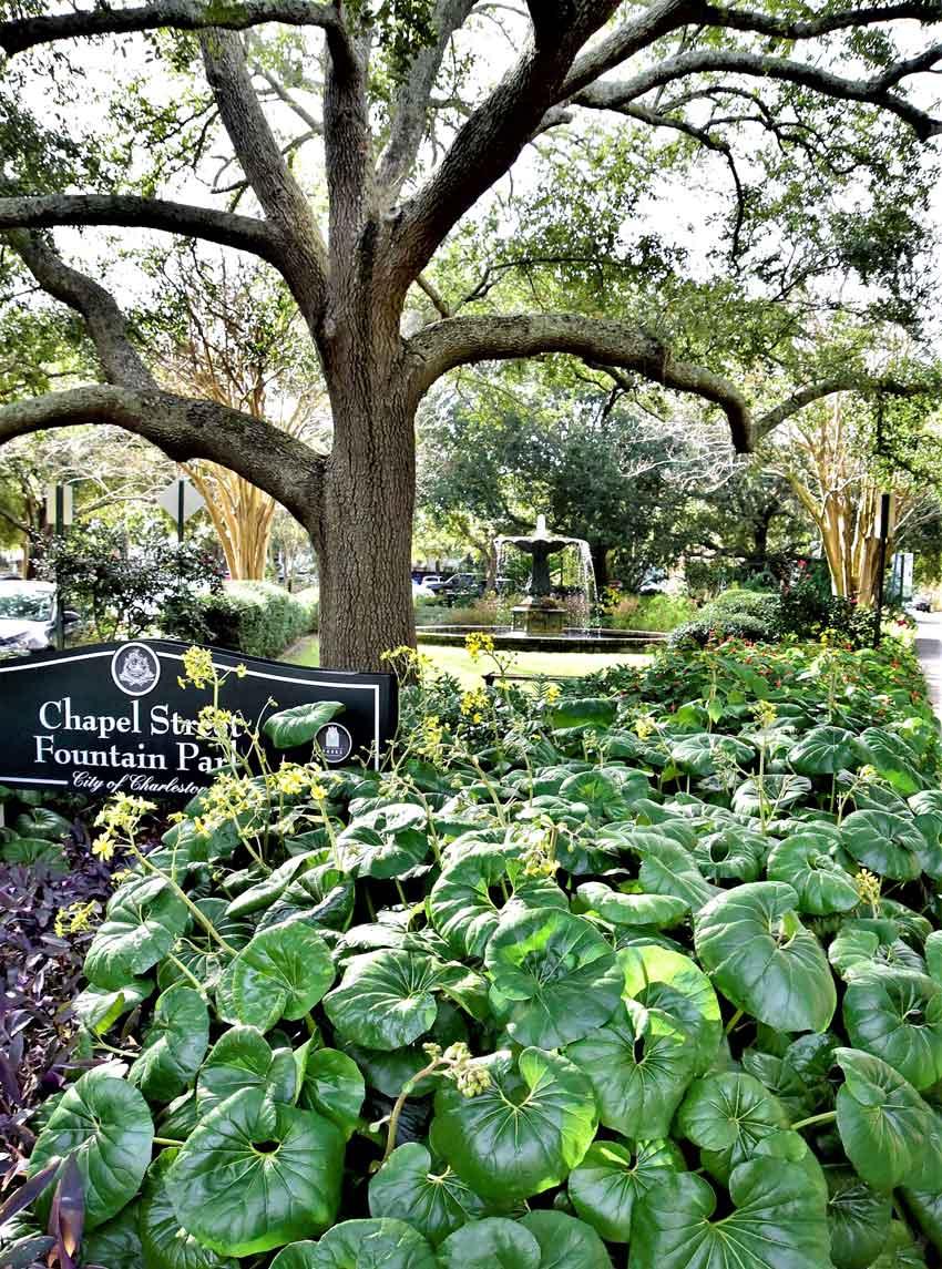 Chapel Street Fountain Park Charleston
