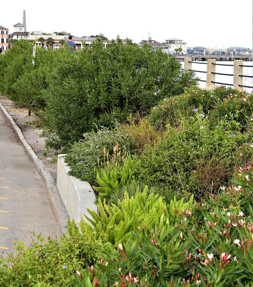 High/Low Promenade Charleston