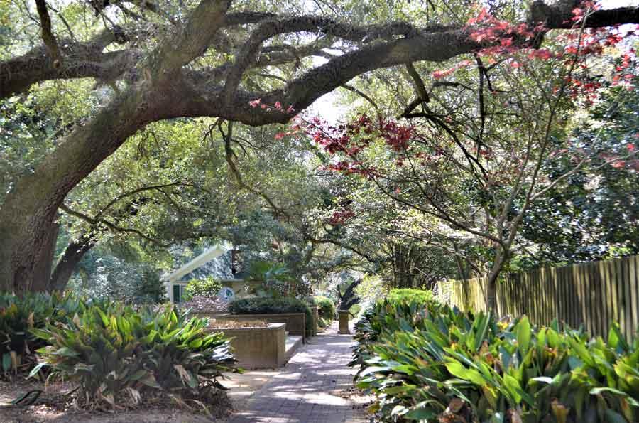 Hopelands Gardens in Aiken